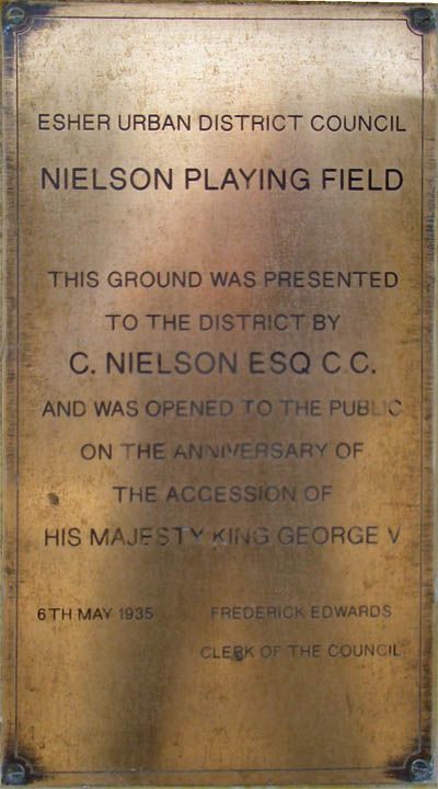 Neilson's Playing Field